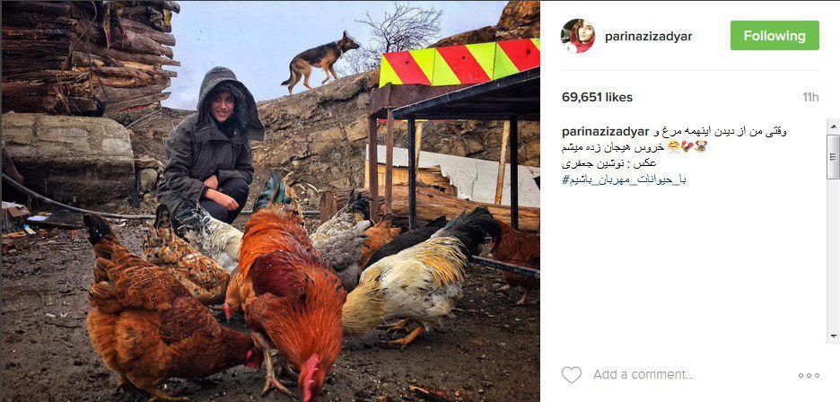 عکس|مرغ و خروس های پریناز ایزدیار!